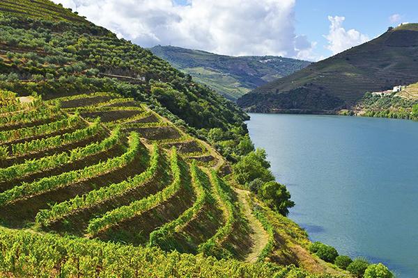 Pacotes de Viagem para Portugal - Rio Douro