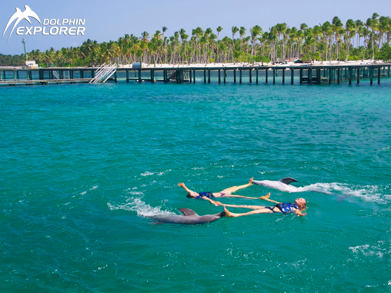 punta cana dolphin explorer - Numatur
