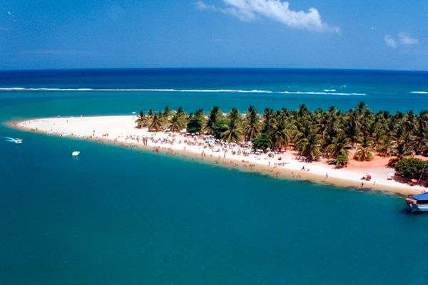Praia do Gunga - Maceió - Alagoas